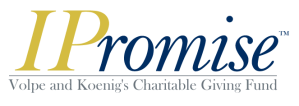 IPromise logo-color
